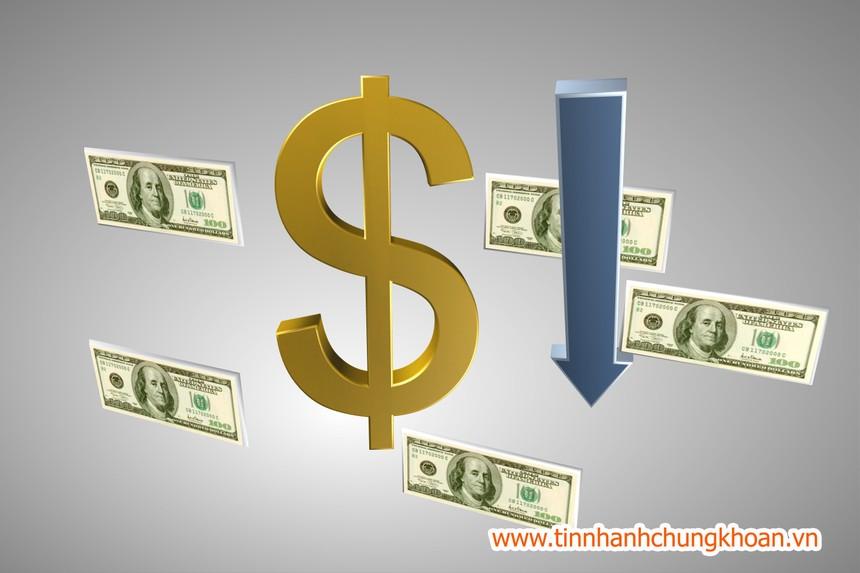 SCR: Quý II, lợi nhuận Công ty mẹ sụt giảm mạnh