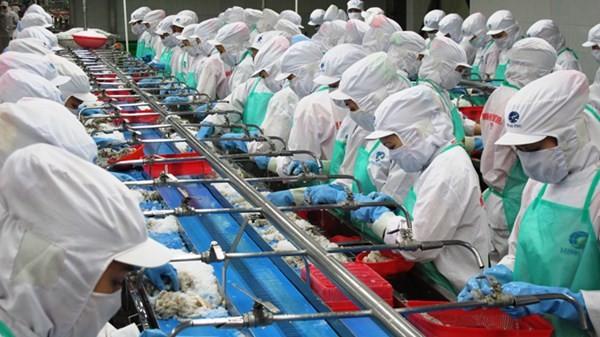 Năm 2018, Thủy sản Minh Phú (MPC) đạt hơn 750 triệu USD doanh thu xuất khẩu
