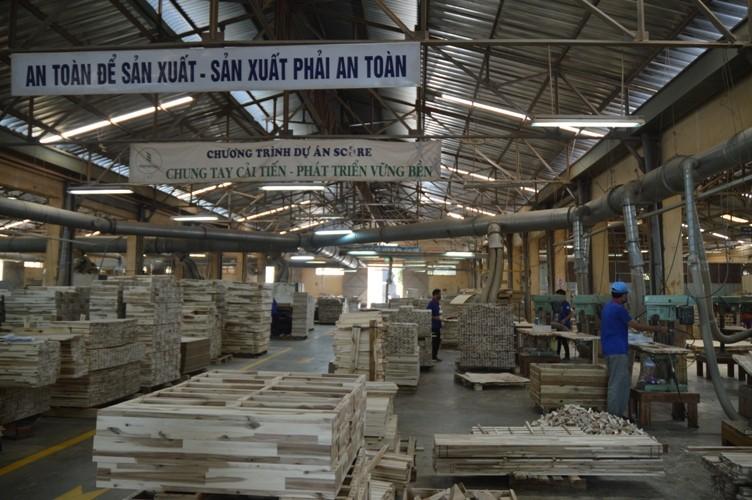Gỗ Thuận An (GTA): Vợ sếp lớn bị phạt 55 triệu đồng vì giao dịch chui