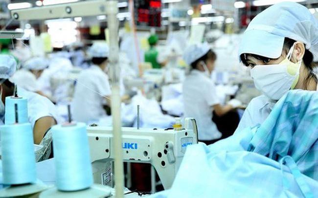 May Xuất khẩu Phan Thiết (PTG) trả cổ tức cao gấp 20 lần thị giá