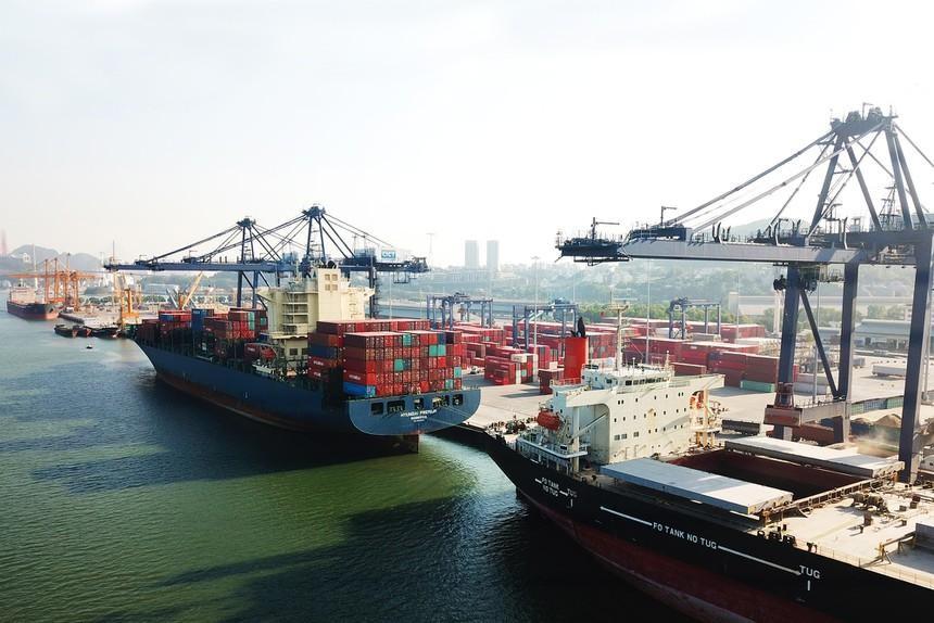 Tập đoàn T&T tiếp tục đăng ký bán 2,6 triệu cổ phiếu Cảng Quảng Ninh (CQN)