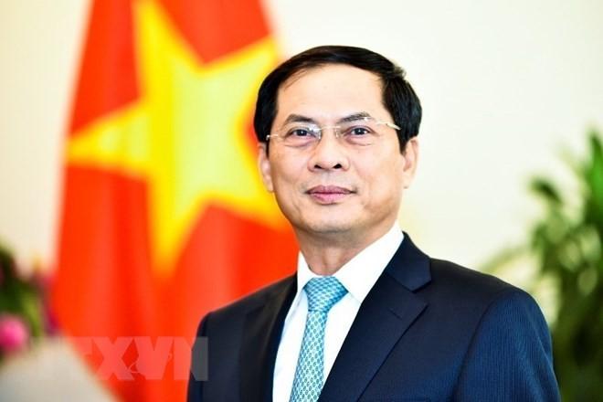 Thứ trưởng Thường trực Bộ Ngoại giao Bùi Thanh Sơn (Ảnh: Vietnam+)