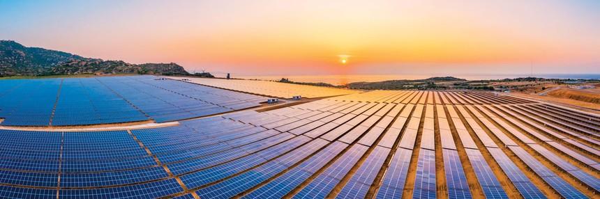 """Giá điện mặt trời """"giảm sốc"""", nhà đầu tư vẫn hào hứng"""