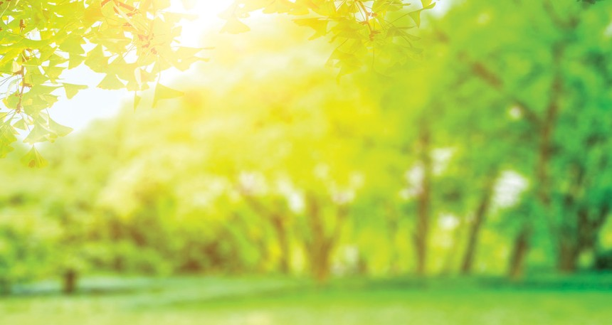 Lan tỏa những giá trị xanh đến cộng đồng