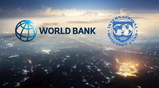 Logo của Quỹ Tiền tệ Quốc tế (IMF) và Ngân hàng Thế giới (WB). (Nguồn: businessamlive).