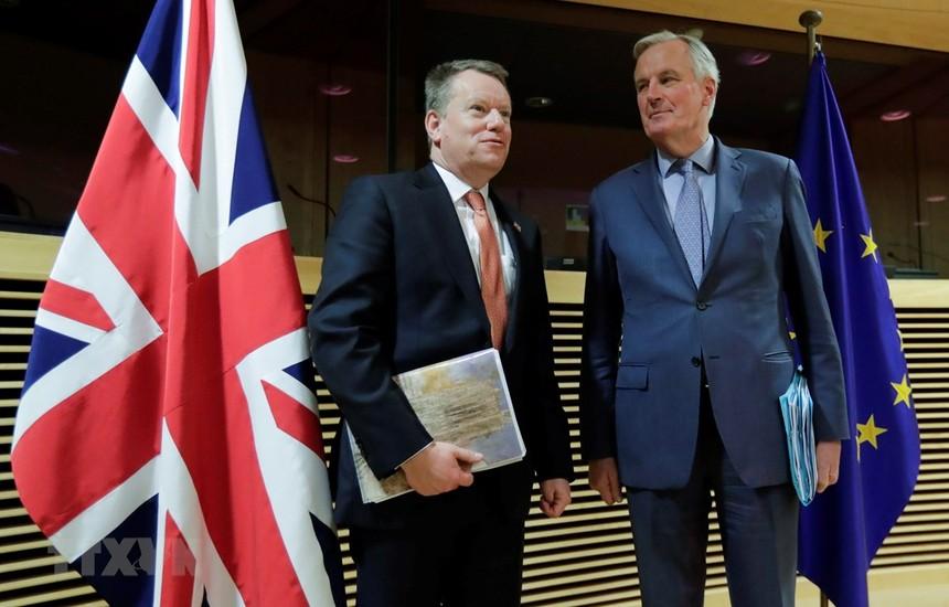 Trưởng đoàn đàm phán thương mại hậu Brexit của Anh David Frost (trái) và người đồng cấp EU Michel Barnier (phải) tại vòng đàm phán ở Brussels, Bỉ ngày 2/3/2020. (Ảnh: AFP/TTXVN).
