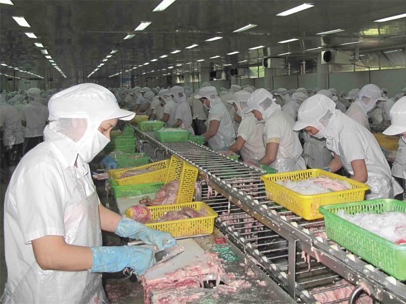 Công nghiệp chế biến là lĩnh vực được tỉnh An Giang khuyến khích đầu tư.