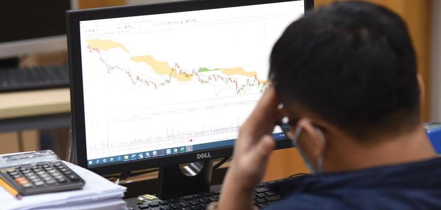 Trong hai tuần qua, VN-Index điều chỉnh nhẹ, nhưng các cổ phiếu vốn hóa trung bình giảm giá mạnh.