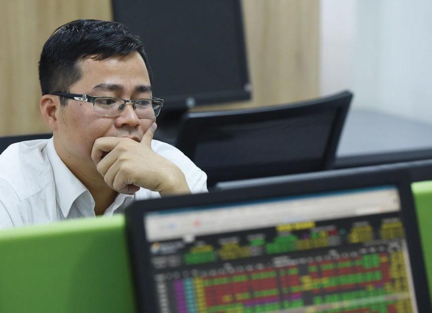 Thị trường chứng khoán ngày càng sôi động, nhưng hàng hóa chất lượng khan hiếm, cung không tăng kịp theo cầu.