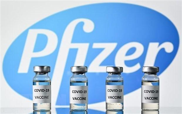 Vaccine do hãng dược Pfizer nghiên cứu và sản xuất (Nguồn:TTXVN).