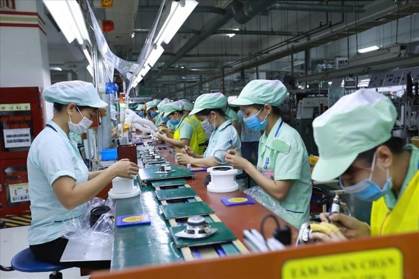 Hơn 80 nghìn người lao động mất việc sẽ được nhận hỗ trợ 1 triệu đồng/người từ Bảo hiểm xã hội Việt Nam