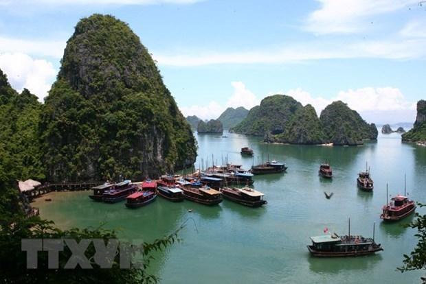 Tàu tham quan Vịnh Hạ Long. (Ảnh: Huy Hùng/TTXVN).