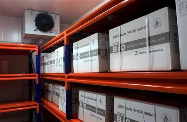 Vaccine được bảo quản ở kho lạnh tại Trung tâm Kiểm soát bệnh tật tỉnh Thái Bình. (Ảnh: Thế Duyệt/TTXVN).