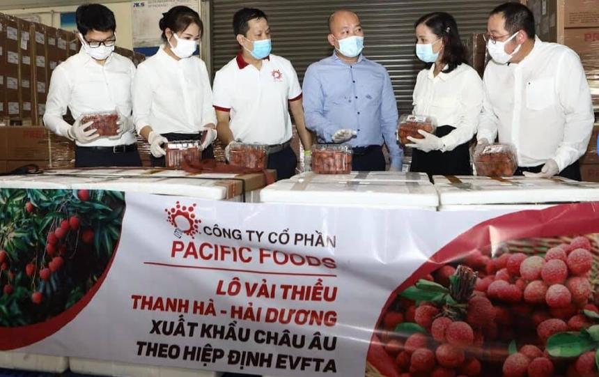 Lô vải thiều Việt Nam đầu tiên xuất khẩu đi châu Âu theo Hiệp định EVFTA