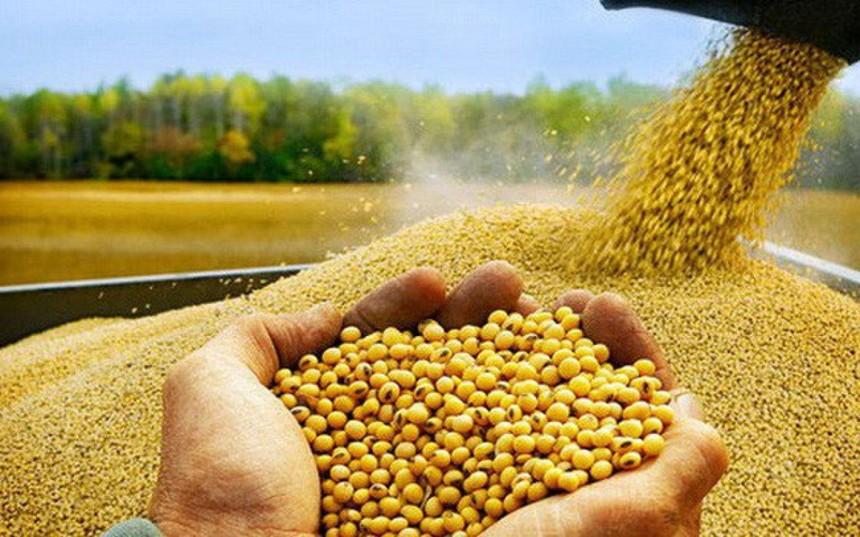 Thị trường hàng hóa tuần từ 3-10/9: Khí LNG và nickel tăng kỷ lục, vàng và nông sản đi xuống