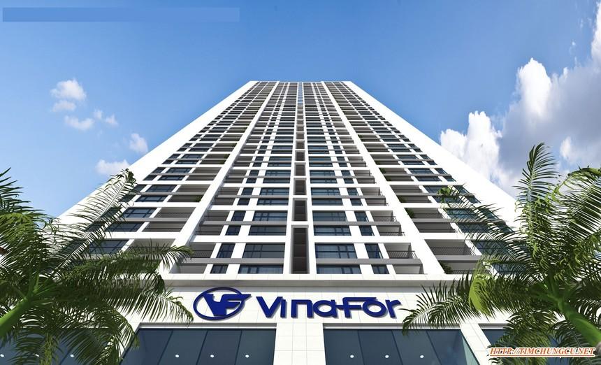 Cổ phiếu VIF của Vinafor tăng gần 60% sau 2 ngày chào sàn UPCoM
