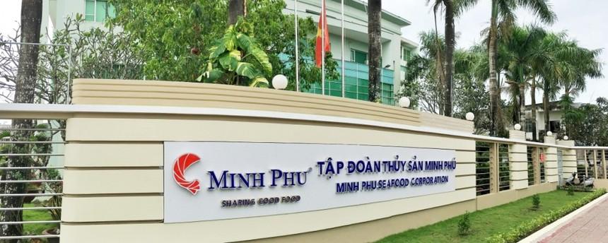 Thủy sản Minh Phú (MPC) bảo lãnh vay vốn cho công ty con 250 tỷ đồng