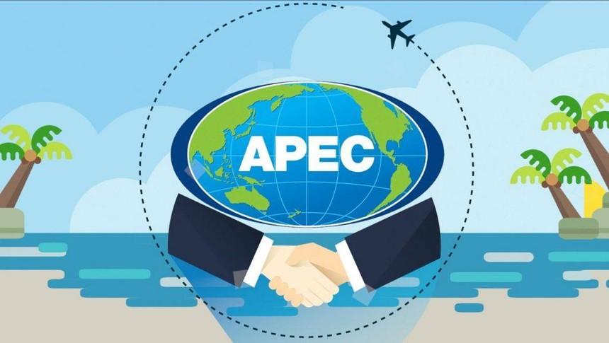 Các bộ trưởng APEC cam kết xúc tiến việc vận chuyển vắc xin Covid-19 và các hàng hóa liên quan