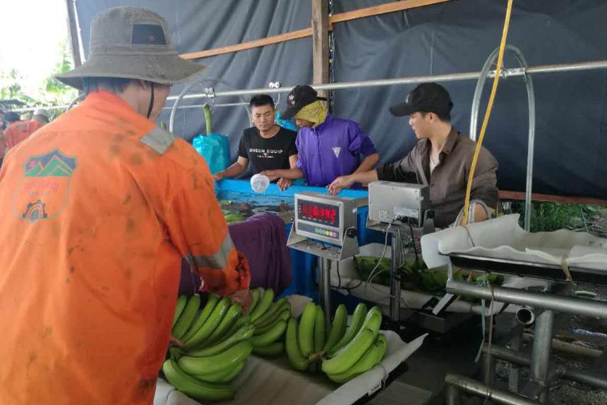 Hoàng Anh Gia Lai (HAG) vừa bán thêm gần 80 triệu cổ phiếu Nông nghiệp Quốc tế Hoàng Anh Gia Lai (HNG)
