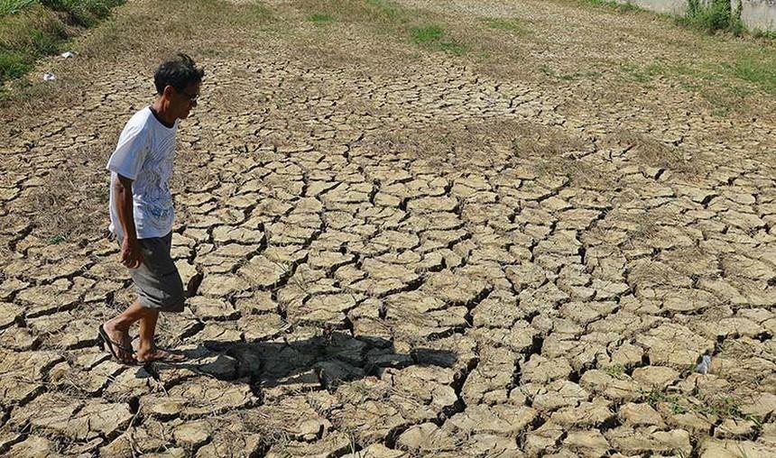 Thế giới đối mặt với nguy cơ thiếu lương thực ngày càng tăng do biến đổi khí hậu