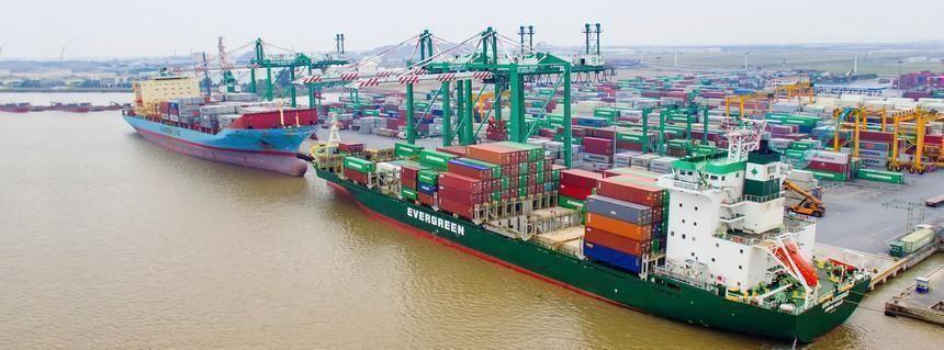 Container Việt Nam (VSC): Đại lý Vận tải Safi (SFI) đăng ký bán 1,29 triệu cổ phiếu