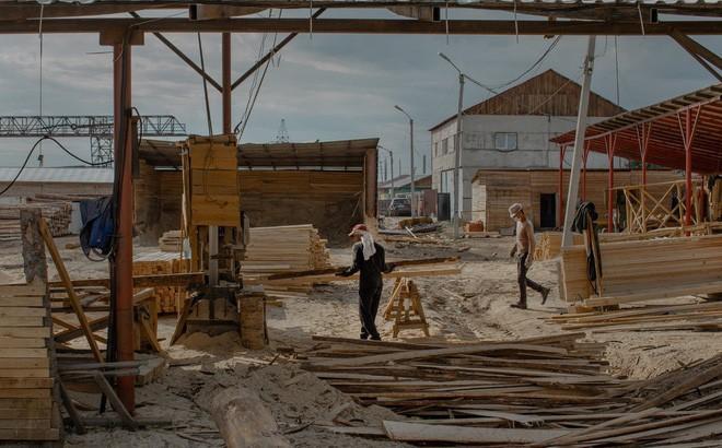 Một xưởng cưa của Trung Quốc ở Kansk, Siberia, Nga. Ảnh: NYT