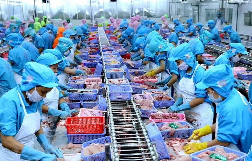 Năm 2020, lợi nhuận sau thuế của Nam Việt (ANV) giảm 71%