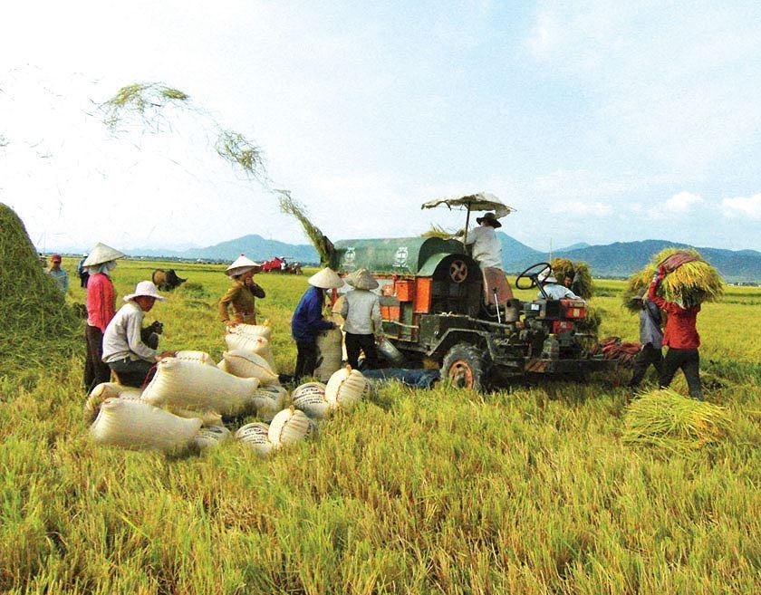 Về chính sách tín dụng phát triển nông nghiệp nông thôn
