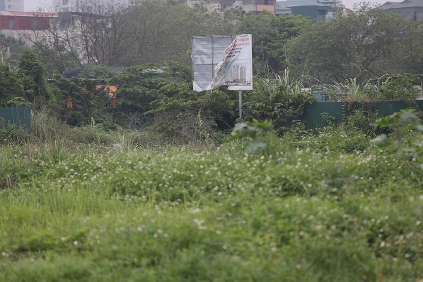 Dự án Khu đô thị Thịnh Liệt của Licogi rơi vào cảnh bê trễ, phơi nắng, phơi sương cả thập kỷ nay