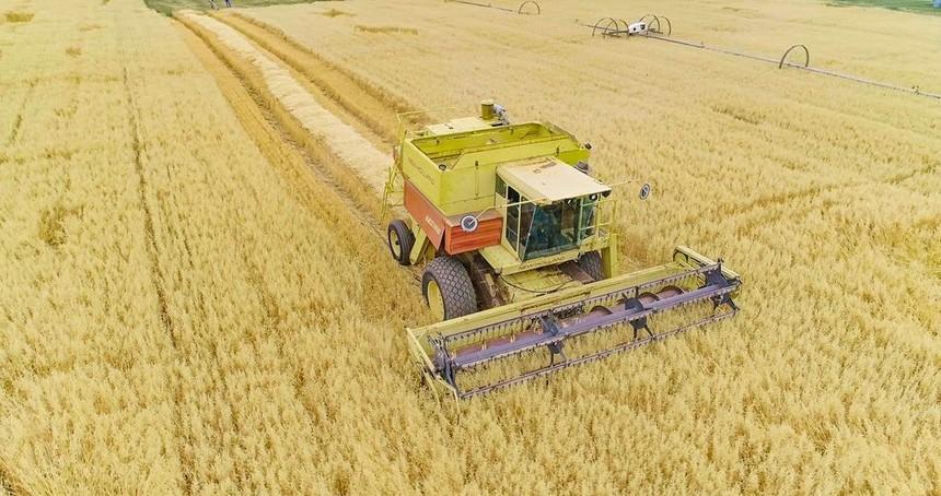 Nguồn nguyên liệu có trong sản phẩm được trồng trọt trên những trang trại hữu cơ được chứng nhận NutriCert