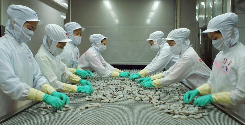 Minh Phú tiếp tục tìm kiếm nhà đầu tư chiến lược