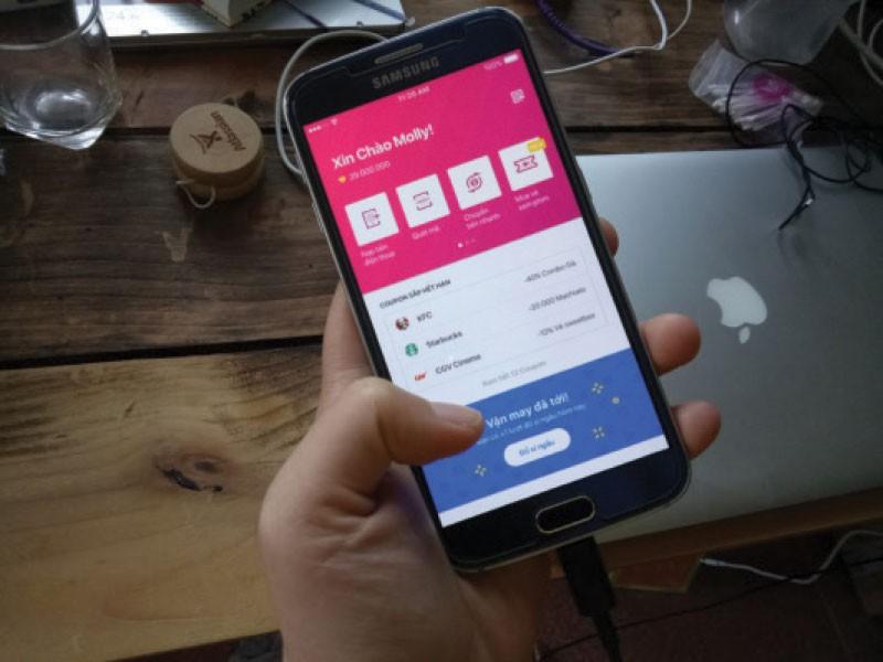 Tại Việt Nam, theo ước tính, hiện nay có khoảng 20 ví điện tử với hơn 4 triệu tài khoản ví