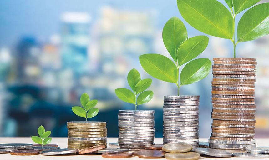 Đầu tư quỹ mở cổ phiếu so với tự đầu tư cổ phiếu