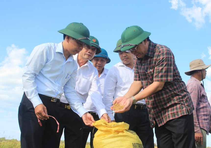 Tỉnh Quảng Trị sẽ có thêm chính sách để hỗ trợ địa phương nhân rộng các mô hình sản xuất theo hướng hữu cơ organic.