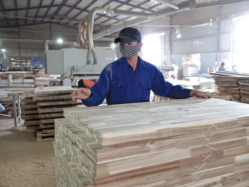 Hiện ngành gỗ Việt Nam có trên 800 doanh nghiệp FDI, trong đó 70% đến từ Trung Quốc, Đài Loan, Hồng Kông… Ảnh: Đức Thanh