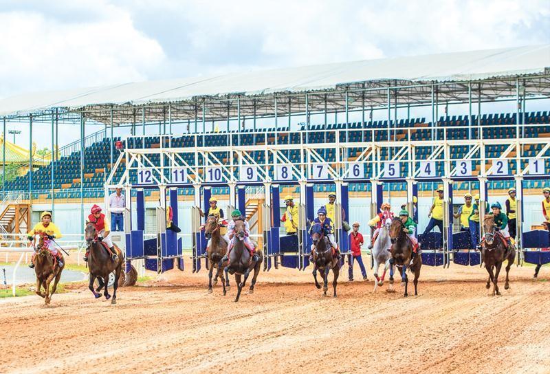 Ở phía Nam, mới có trường đua ngựa ở Bình Dương, nhưng dự án này chưa được phép kinh doanh đặt cược. Ảnh: Đại Nam