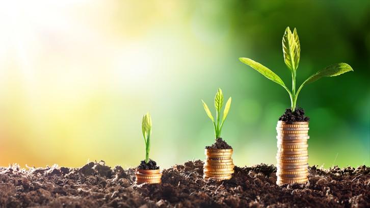 Tín dụng xanh cho tương lai vững bền: Kinh nghiệm và hỗ trợ của GIZ về thúc đẩy tín dụng xanh ở Việt Nam