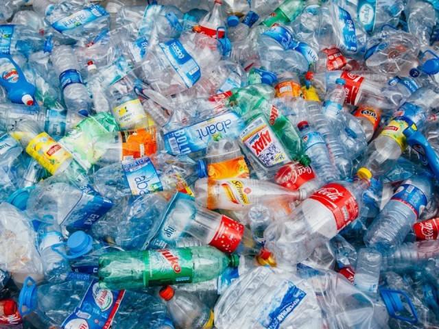 Rác thải nhựa gây nguy hại lớn cho môi trường