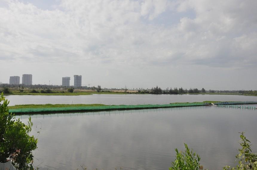 TP. Đà Nẵng tạm dừng khởi Công trình đường vành đai tây 2 - đường và cầu qua sông Cổ Cò.