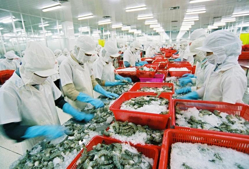 Ngành thủy sản chủ động ứng phó đại dịch