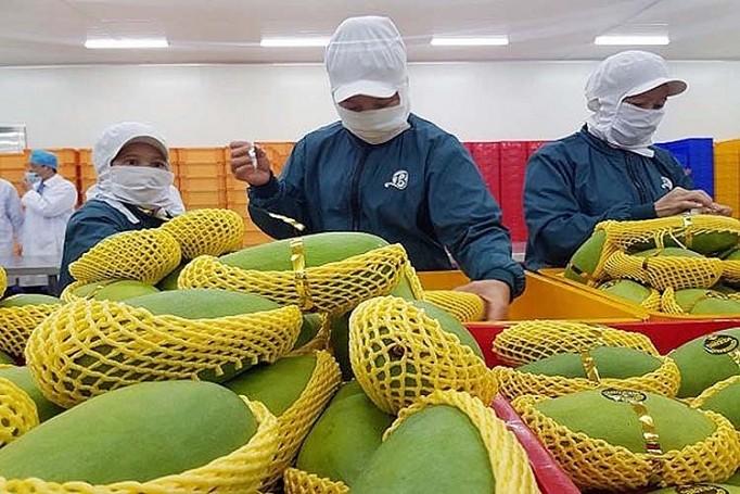Tính đến 15/4, cả nước đã ghi nhận thêm một số ngành hàng xuất khẩu tỷ USD, gồm: rau quả, cà phê, xơ sợi...