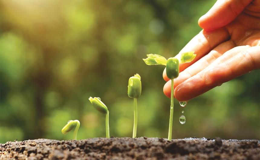 Ấn tượng Top 10 doanh nghiệp làm báo cáo phát triển bền vững tốt nhất