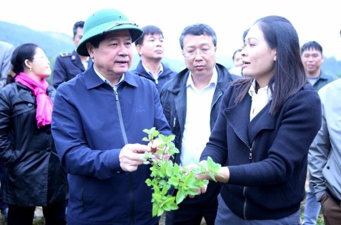 Thạch đen Lạng Sơn xuất khẩu chính ngạch sang Trung Quốc