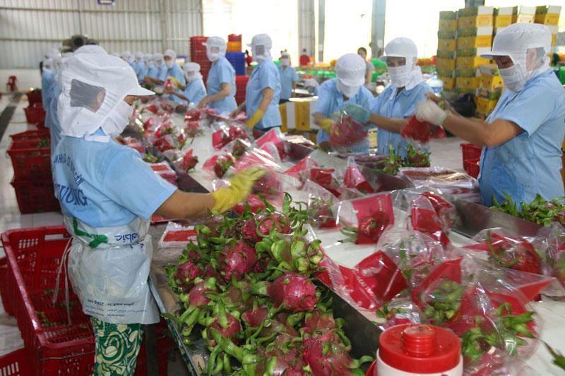 Xuất khẩu nông sản bứt tốc ngay từ đầu năm