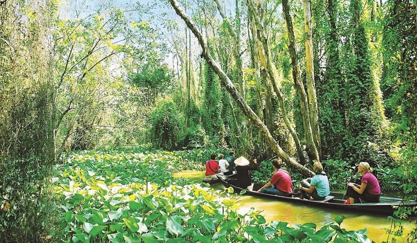 Du lịch sông nước là một trải nghiệm không thể bỏ qua khi đến Đồng Tháp
