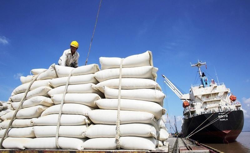 Công ty là đơn vị cung ứng nguồn để Tổng Công ty Lương thực miền Bắc xuất khẩu gạo.