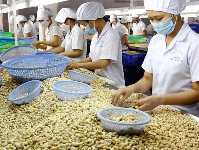 Nhập khẩu hạt điều 4 tháng đầu năm 2021 đã vượt cả năm 2020, trị giá gần 1,9 tỷ USD