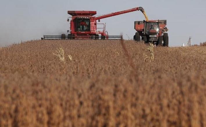 Kim ngạch nhập khẩu nông sản tiến gần nhất đến cam kết 4 tháng đầu năm 2021, đạt mức 79% dựa theo số liệu của Mỹ và 87% dựa theo số liệu của Trung Quốc. Ảnh tư liệu: AFP