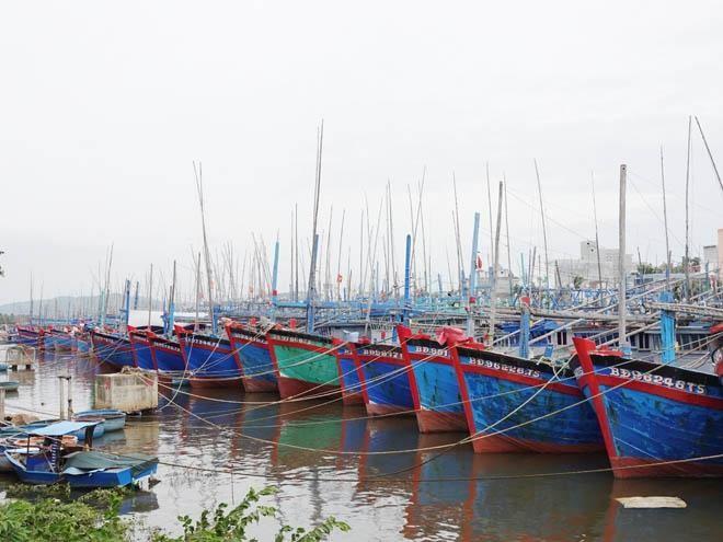 Khu vực đầm Đề Gi và Tam Quan là khu neo đậu tránh trú bão cho tàu cá cấp vùng kết hợp cảng cá Đề Gi và Tam Quan.