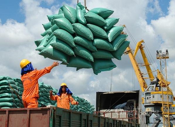 Việt Nam đã xuất khẩu 4 triệu tấn gạo trong 8 tháng, trong đó xuất sang Philippines và Trung Quốc đạt gần 2,3 triệu tấn.